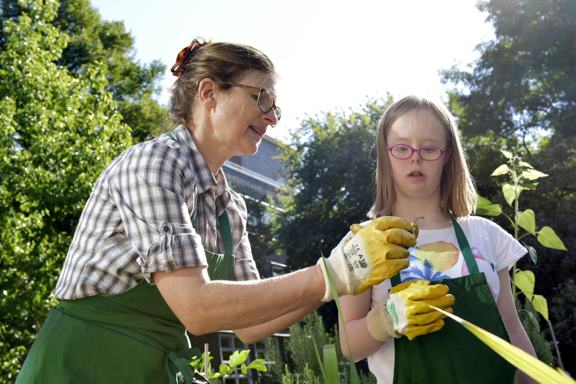 das Foto zeigt eine junge Frau mit Behinderung und eine Ausbilderin in einem Gemüsebeet beim Anschauen einer Knolle